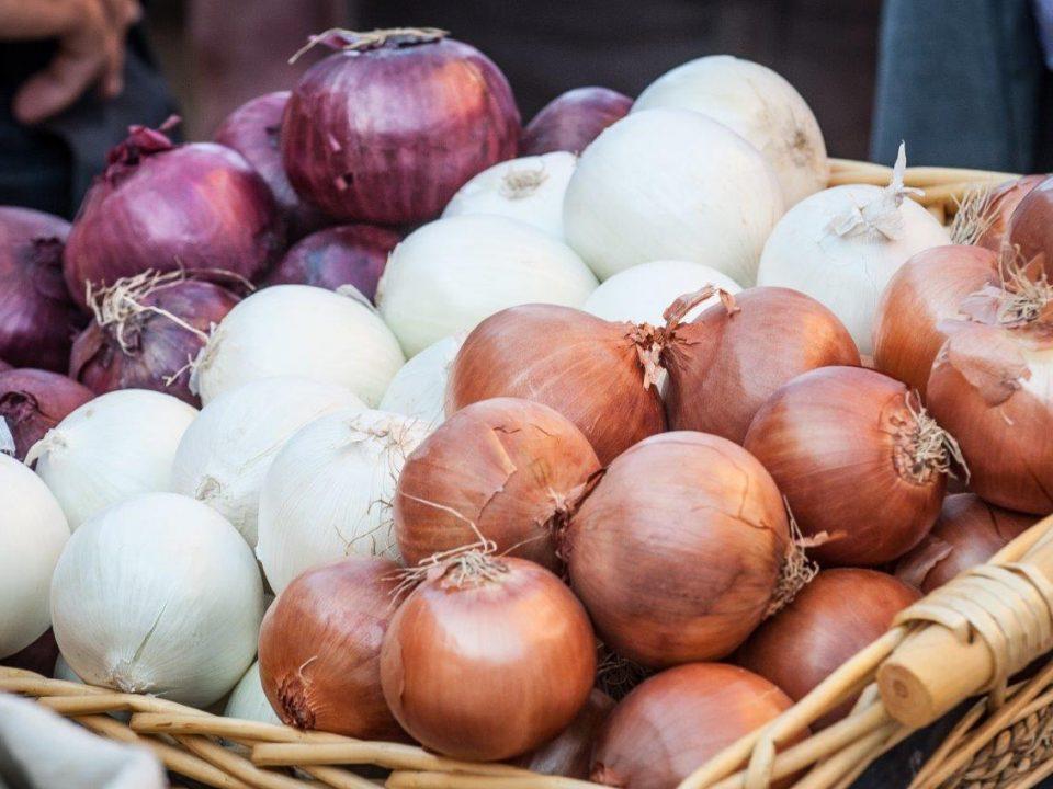 Cipolla e Scalogno, il gusto inconfondibile