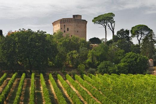 Per curiosi e appassionati di vino la meta è la Rocca di Dozza