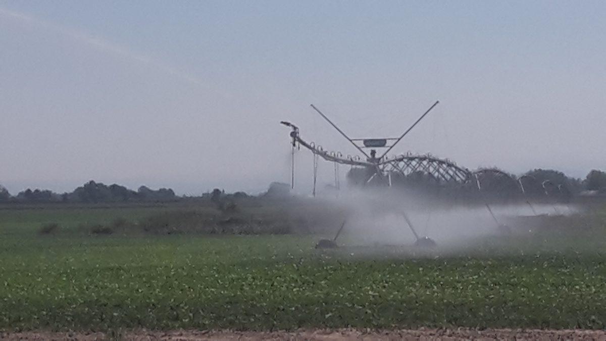 Allerta siccità nella Romagna Occidentale