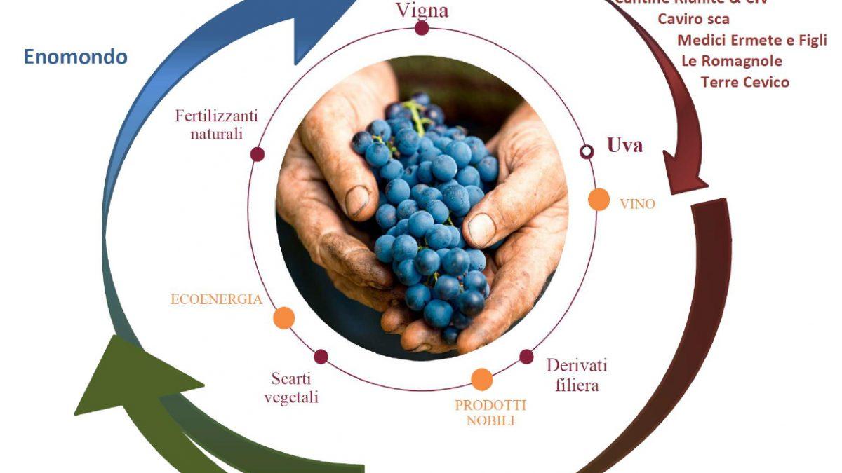 """Nasce """"Legàmi di Vite"""", un importante contratto di sviluppo """"green"""" nel comparto vitivinicolo."""